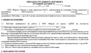 Трудовой договор ИП с продавцом - образец заполнения и особенности