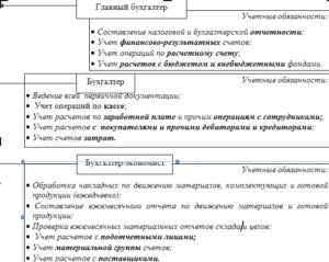 Должностная инструкция главного бухгалтера ООО: требования к документу и образец