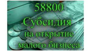 Субсидия 58800 рублей от Центра Занятости