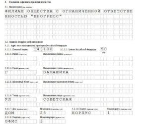 Как нужно заполнять форму р13001: советы специалиста