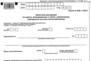 Нулевая декларация для ИП: порядок заполнения и сроки сдачи