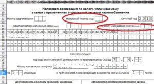 Как правильно заполнять и в какие сроки подавать нулевую декларацию по УСН