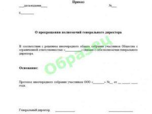 Заявление учредителю на увольнение директора: образец для написания, а также какие нюансы включает в себя данная процедура и что пишет руководитель в этом случае
